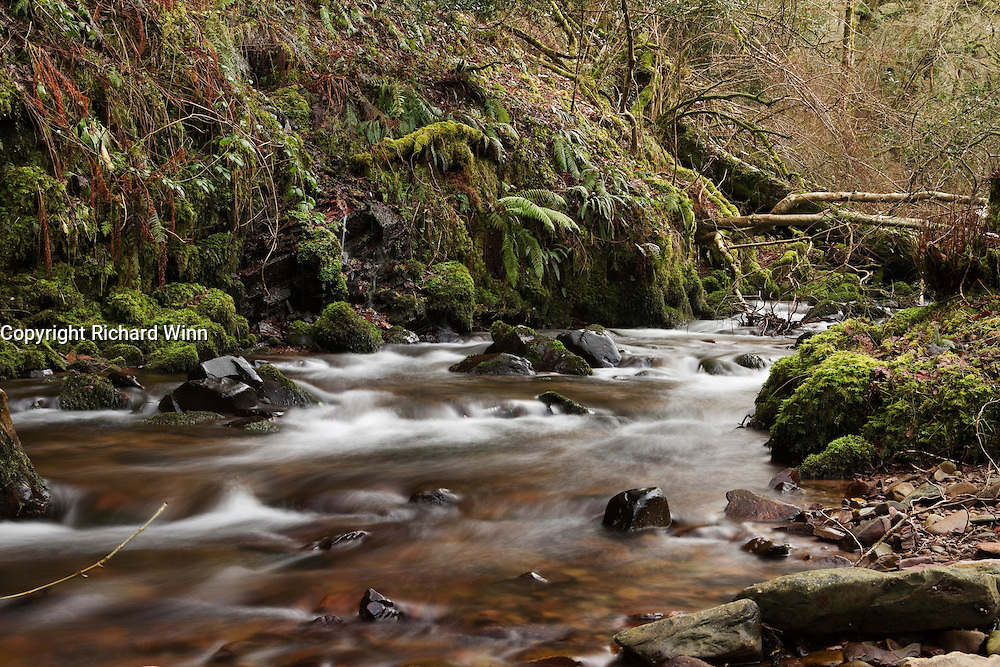 One of the fast flowing, shallower sections of Horner Water in Winter. LIke many of Exmoor's rivers, Horner Water is a spate river.