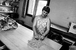 Brazsile - Bento Gonçalves è un comune del Brasile nello Stato del Rio Grande do Sul. maria, famosa per i suoi tortellini.