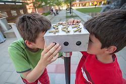 "United States, Washington, Bellevue, boys at ""Gazing Maze"" in  Bellwether 2012 outdoor sculpture exhibition in City Hall Plaza  MR"