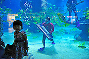"""(CHINA OUT, FINLAND OUT)<br /> <br /> TIANJIN, CHINA - SEPTEMBER 19: (CHINA OUT)<br /> <br /> Music Show Underwater<br /> Musicians perform in water at Haichang Polar Ocean World on September 19, 2013 in Tianjin, China. The ocean park formed the """"ocean band"""" ahead of Mid-Autumn Festival to attract visitors. The music for the band's shows will be pre-recorded. <br /> ©Exclusivepix"""