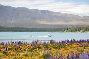 Waterskiing at Lake Tekapo, New Zealand