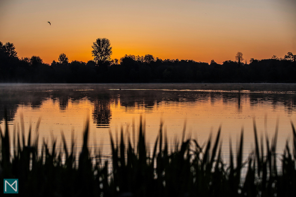 Sunrise at the Aquadrome, Rickmansworth