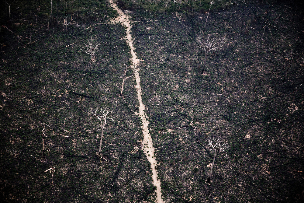 , Brazil. September 18th 2007. Flight from Alta Floresta to Novo Progresso (Brazilian Amazon). Views of the rainforest during the burning season were big sections are set on fire by farmers to be cleared for soy farming or cattle grazing.