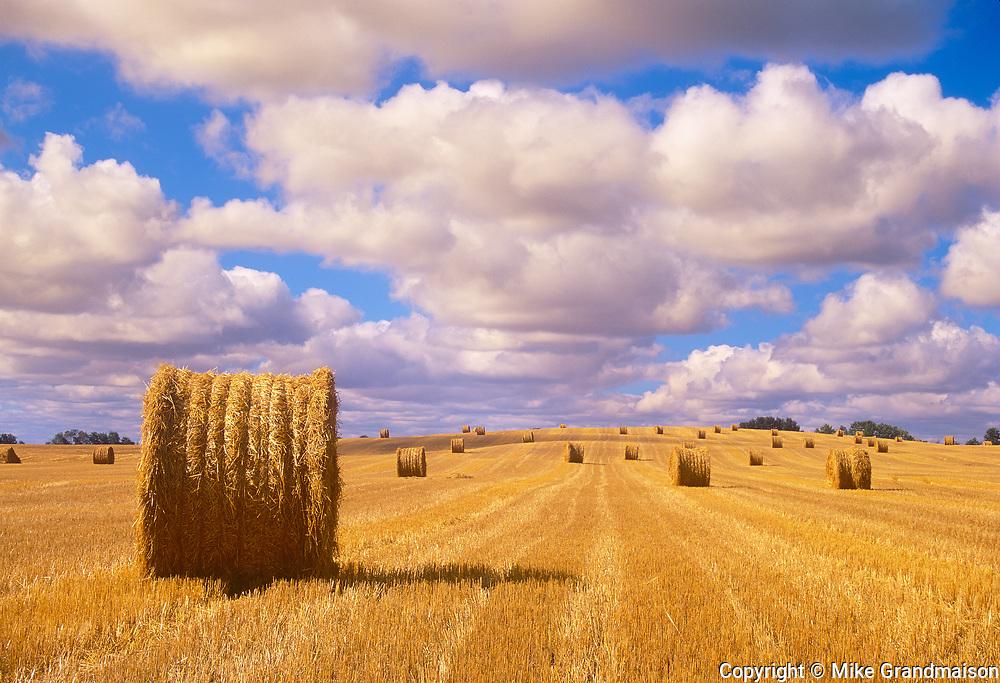 Bales and cumulus clouds. Shellbrooke; Saskatchewan; Canada