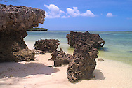 Aldabra Atoll, The Seychelles<br /> 'Champignon' rock formations along a beach<br /> c. Ellen Rooney