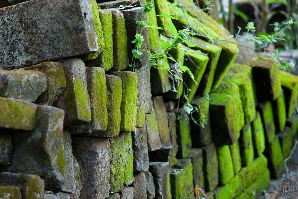 """Mossy Bricks"" - This old stack of mossy bricks were photographed in Puerto Vallarta, Mexico."