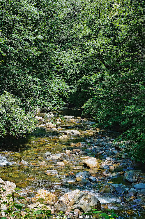 Mountain Stream, Smoky Mountains.