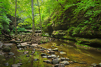 Matthiessen State Park IllinoisCrerek running through Dells area canyon. Matthiessen State Park, LaSalle County, Illinois