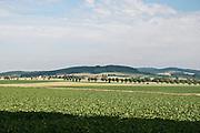 Landschaft Naturpark Solling-Vogler, Weserbergland, Niedersachsen, Deutschland.| .landscape Weserbergland, Lower Saxony, Germany.