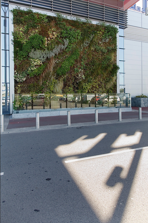 Mur vegetal - realisation Jardin unique