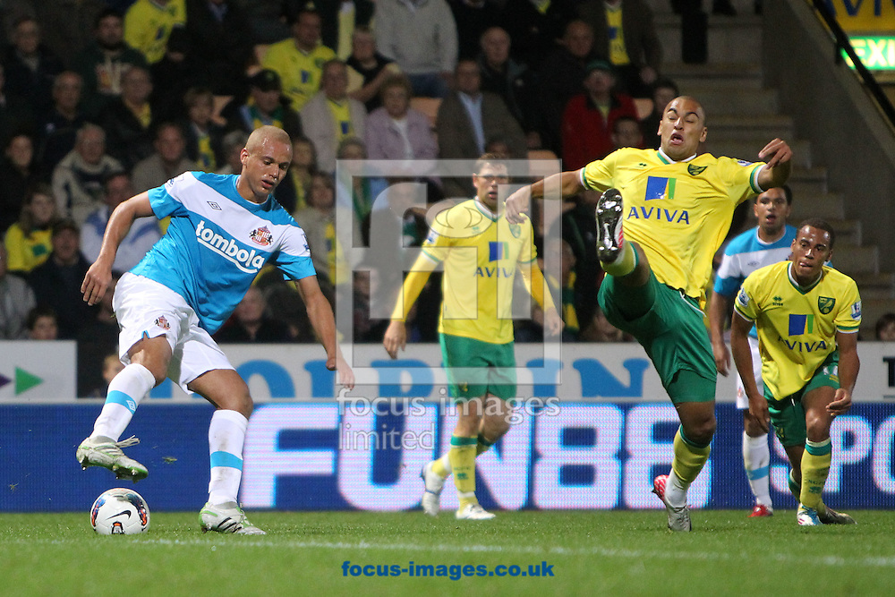 Picture by Paul Chesterton/Focus Images Ltd.  07904 640267.26/9/11.Wes Brown of Sunderland and James Vaughan of Norwich in action during the Barclays Premier League match at Carrow Road stadium, Norwich.