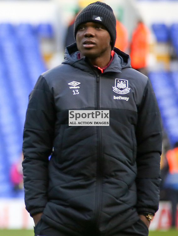 Angelo Ogbonna ahead of Tottenham Hotspur vs West Ham United on Sunday the 22nd November 2015.