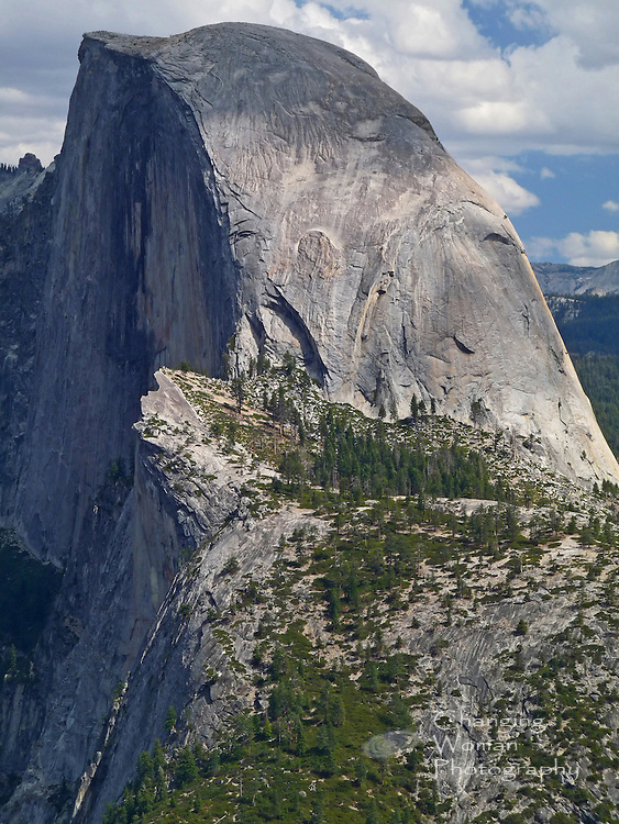 Half Dome, iconic geologic feature of Yosemite National Park, looms large in this vertical landscape image made at Glacier Point.  Sharp details show the weathered texture and subtle colorations of Half Dome's gray granite.