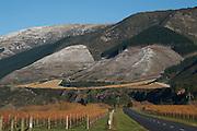 Craggy Range vineyard, Marlborough, New Zealand