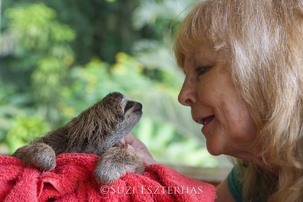 Brown-throated Three-toed Sloth <br /> Bradypus variegatus<br /> Judy Avey- Arroyo, Sanctuary Owner, with 2 month old orphaned baby<br /> Aviarios Sloth Sanctuary, Costa Rica<br /> *Captive - Rescued and in rehabilitation program<br /> *Model release available
