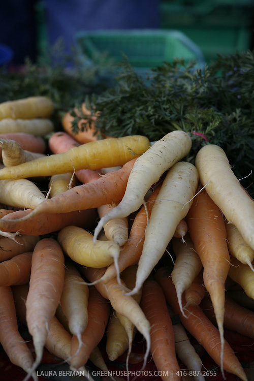 White, yellow and orange carrots for sale at a farmers' market.