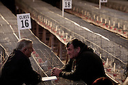 Two men in discussion at the annual Royal Pigeon Racing Association Show of the Year at the Winter Gardens, Blackpool. The two-day show takes place each year in Blackpool and attracts 4000 entries from pigeon fanciers from all over the world. The two-day event attracted 20,000 competitors and spectators.