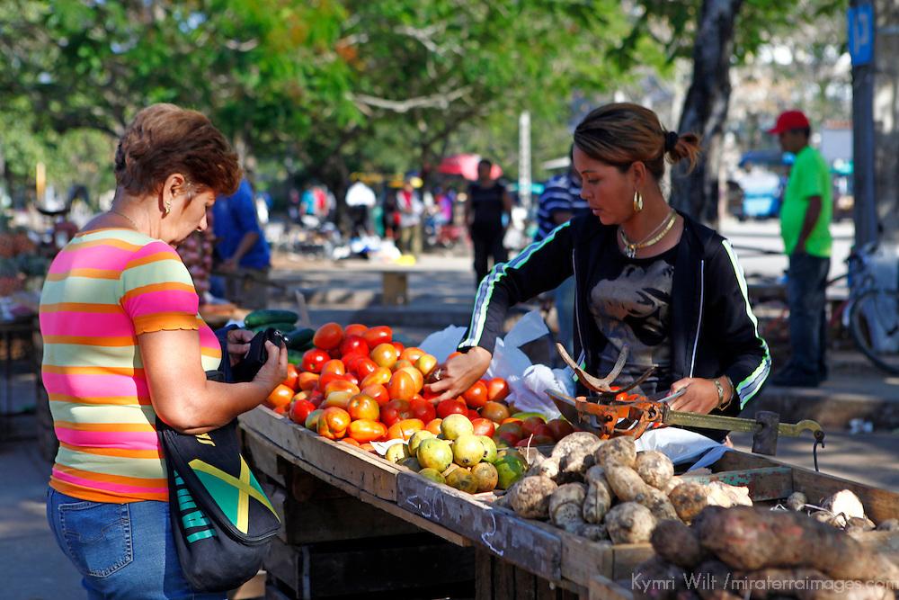 Central America, Cuba, Santa Clara. Buying tomatoes at the local farmer's market in Santa Clara, Cuba.