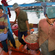 """Fishermen unload their nightly catch at Duong Dong Market on Phu Quoc Island, Vietnam. Phu Quoc is Vietnam's newest beach destination, just a 50 minute flight away from Ho Chi Minh City. With its proximity closer to the Cambodian mainland than to Vietnam, it was a launching pad for thousands of """"Boat People"""" refugees during the 1970s and 1980s, and has a strong military presence. However, with tourism in Vietnam booming, the government has opened up this largely agricultural and fishing island to foreign tourists, who can now enjoy sunsets on the only beaches in Vietnam that face west."""