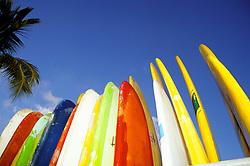 Oahu, Hawaii: Surboards waiting on Waikiki Beach.