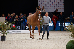 Van Der Meer Patrick, (NED), Zippo<br /> LONGINES FEI World Cup™ Finals Paris 2018<br /> © Dirk Caremans<br /> 12/04/2018