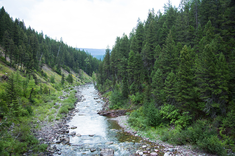 Spotted Bear River, Montana.