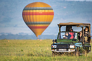 A hot air balloon lands in the background as tourist drive by in a game viewer in Maasai Mara National Reserve, Kenya