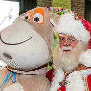 NLD/Amsterdam/20161207 - 8e Sky Radio's Christmas Tree For Charity,
