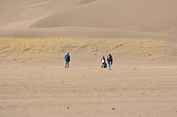 Colorado Fall Nature; Grand Sand Dunes NP; Alamosa NWP