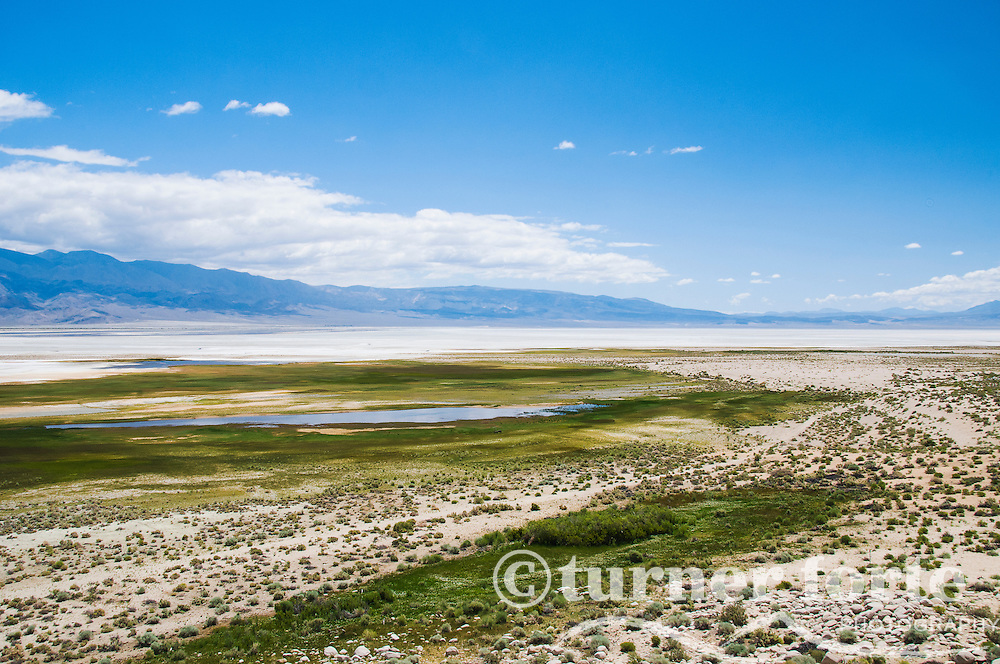 View of almost dry Owens Lake and salt flats from the Elk Seep lookout point, a popular bird watching spot, Eastern Sierras, California.