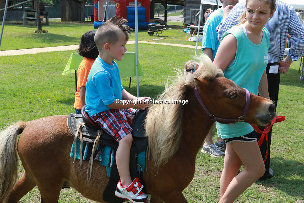 LIBBY EZELL | BUY AT PHOTOS.DJOURNAL.COM<br /> Skylar Ratliff, 4, rides a pony Saturday at the Arc in the Park event at the Oren Dunn Museum