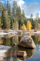 """Snowy Coldstream Pond 2"" - This boulder and yellow leaved Cottonwood trees were photographed at a snowy Coldstream Pond in Truckee, California."