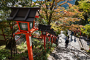 Red Japanese lanterns line steps up to Kurama-dera. Kurama-dera is a peaceful Buddhist temple along the steep wooded mountainside above the rural town of Kurama, in the northern mountains of Kyoto City (Kyoto-fu), Japan. A cablecar takes you halfway up the mountain.  In September 2018, a typhoon snapped trees and extensively damaged the grounds of Kurama Temple. During our visit in November, the cablecar was required to reach walking trails to the main hall; and the steep 1-hour hiking trail between Kurama and Kibune was closed until further notice.