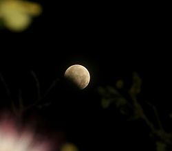 August 8, 2017 - Banda Aceh, Aceh, Indonesia - Partial lunar eclipse seen in the sky of Indonesia. Partial lunar eclipses occur as the earth moves between the sun and the moon, but not parallel. (Credit Image: © Abdul Hadi Firsawan/Pacific Press via ZUMA Wire)