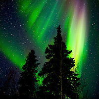 Aurora in night sky above Chena Hot Springs near Fairbanks Alaska.