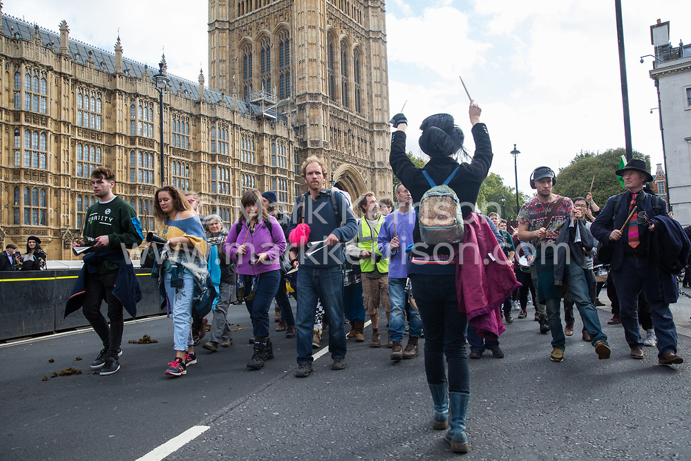 London, UK. 8 October, 2019. Climate activists from Extinction Rebellion perform with the XR Samba Band in front of Parliament on the second day of International Rebellion protests to demand a government declaration of a climate and ecological emergency, a commitment to halting biodiversity loss and net zero carbon emissions by 2025 and for the government to create and be led by the decisions of a Citizens' Assembly on climate and ecological justice.