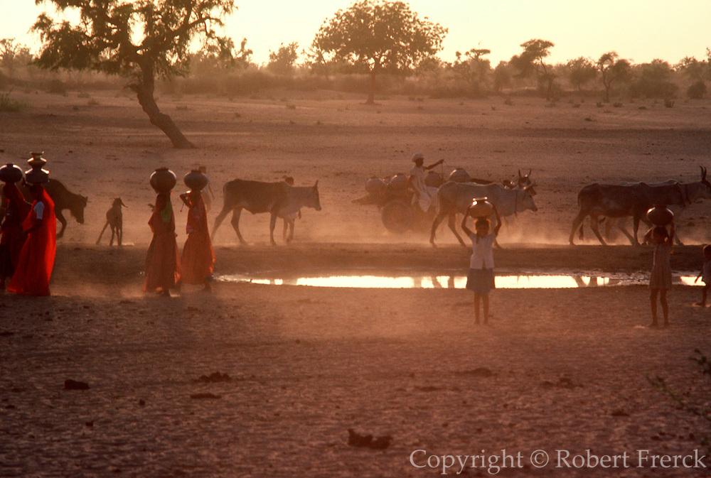INDIA, RAJASTHAN Carrying water from a desert well near a village near Jodhpur