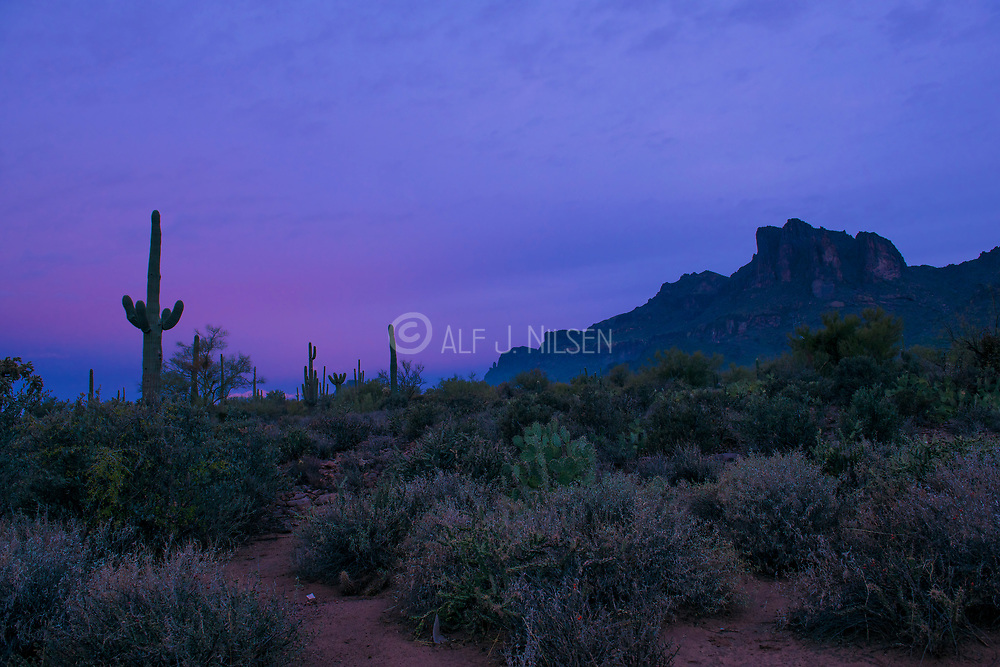 Early morning in the desert. Landscape from the Superstitions, southern Arizona