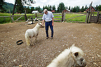 Al Kyle pets one of the mini ponies he and his wife, Daryl, own on the 440 acres of land that make up Cedar Mountain Farm near Athol. The couple turned the family homestead into a bed and breakfast 10 years ago and are now hoping to expand to include equine therapy and shelter care for people in need.