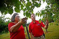 Backyard Road Farm & Vineyard's Deborah Price (left) and Vance County extension agent Paul McKenzie discuss her current crop at her farm outside Henderson.