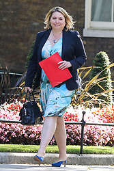 © Licensed to London News Pictures. 23/07/2019. London, UK. Secretary of State for Northern Ireland Karen Bradley  arrives in Downing Street to attend Theresa May's final Cabinet meeting. Photo credit: Dinendra Haria/LNP
