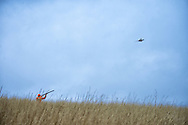 Pheasnt hunting
