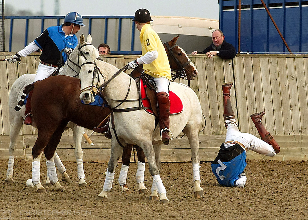 Prince William tumbles from his horse while playing against his brother Prince Harry (in yellow) in a charity polo match in aid of the victims of the Boxing Day earthquake in the far east.