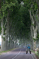 Tractor driving down a tree lined road in Burgundy France.