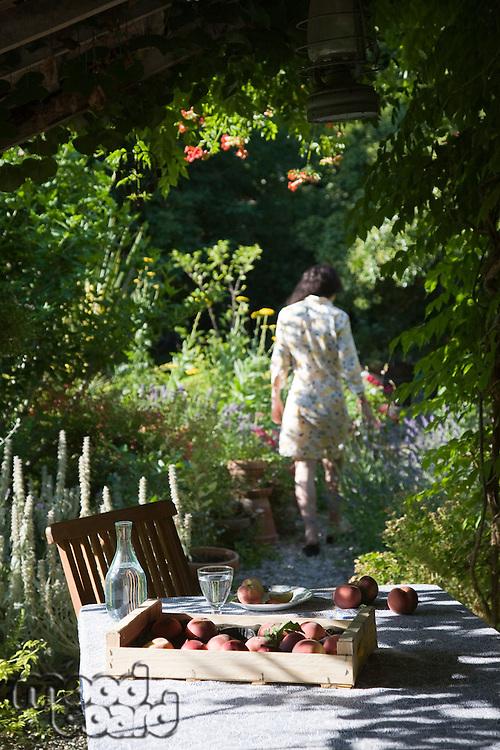 Person in garden