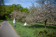 A pensioner couple collecting blooming leaves on a walk in the fields.