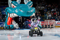 KELOWNA, CANADA - SEPTEMBER 24: Rocky Raccoon, the mascot of the Kelowna Rockets enters the ice against the Kamloops Blazers on September 24, 2016 at Prospera Place in Kelowna, British Columbia, Canada.  (Photo by Marissa Baecker/Shoot the Breeze)  *** Local Caption *** Rocky Raccoon; Mascot;