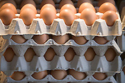 brown eggs stored in paper egg trays