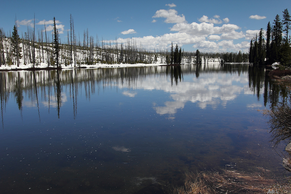 Late snow still sits on the high ground of Yellowstone National Park at mid-summer; this is along the Firehole River, near Old Faithful.
