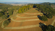 Aerial drone view over Résonance Vineyards, Yamhill-Carlton AVA, Willamette Valley, Oregon